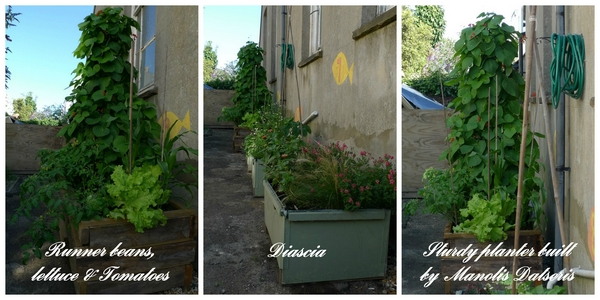Planters_2_titled_web