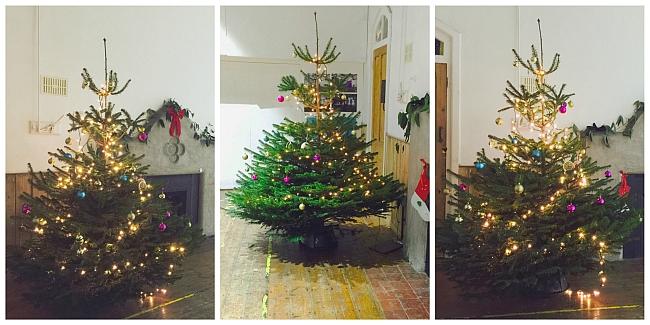 Xmas Tree Collage_web